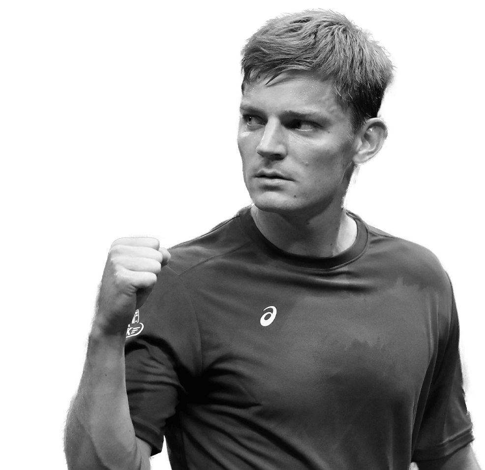 cutouts_Goffin